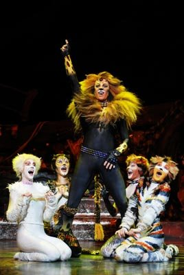 The Rum Tum Tugger, surrounded by his adoring female fans