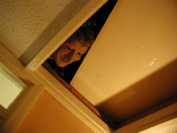 The Doctor's Head goes for a Roll - Loft Squatter